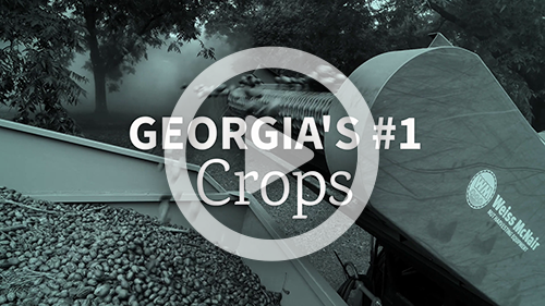 Georgias #1 Crops